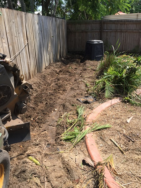 Ground up palm stumps in garden bed