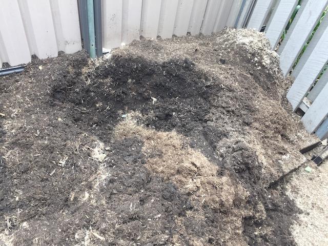 Tree Stump Mulsh in Kenmore