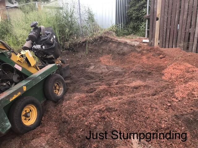 Leftover gum stump with stump grinder